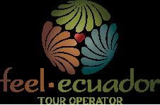logo_feel_ecuador